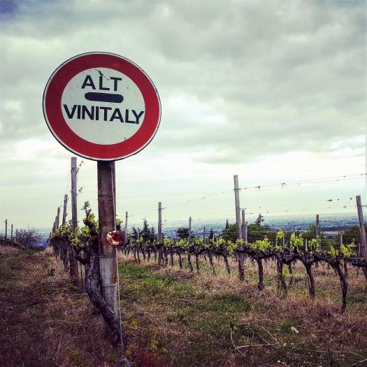 alt vin